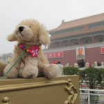 Fuzzy does the Forbidden City